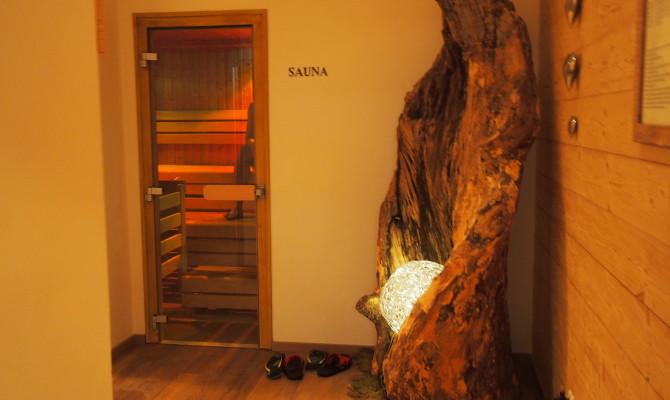 Sauna dla alergika